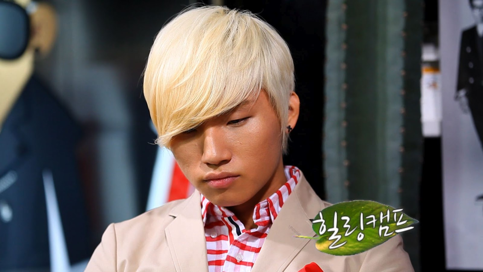 http://ygfamilylover.files.wordpress.com/2012/02/big-bang-daesung-gdragon-healing-camp.jpg